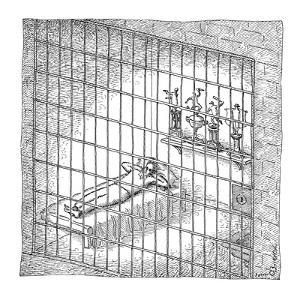 Inmate lies in jail cell with trophies behind him. - New Yorker Cartoon by John O'brien