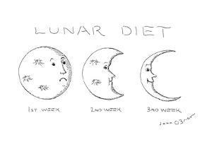 LUNAR DIET - New Yorker Cartoon by John O'brien