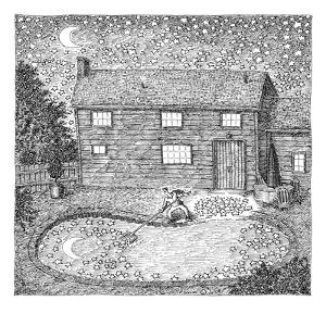 Man fishes stars out of his pool at nighttime.  - New Yorker Cartoon by John O'brien