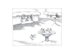 Skating Birds - Cartoon by John O'brien