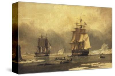 The 'Swan' and 'Isabella' Whaling in the Arctic