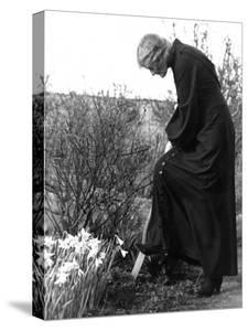 Madame Maud Gonne MacBride Working in Her Garden by John Phillips