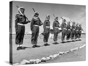 The Arab Legion Standing in a Formal Line by John Phillips
