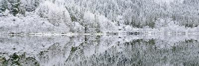 Reflections on Loch Chon in winter, Aberfoyle, Stirling, The Trossachs, Scotland, United Kingdom