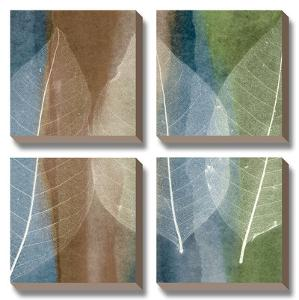 Leaf Stricture II by John Rehner