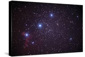 Orion's Belt by John Sanford