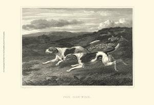 Foxhounds by John Scott