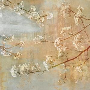 Blossoms on the Pond II by John Seba