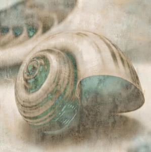 Coastal Gems II by John Seba