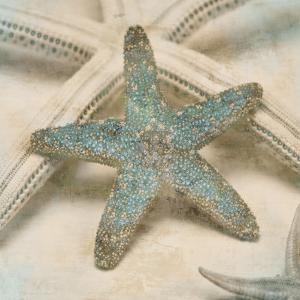 Coastal Gems III by John Seba