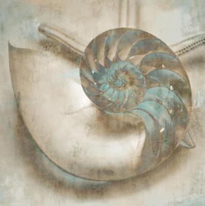 Coastal Gems IV by John Seba