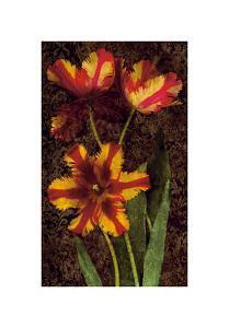 Decorative Tulips I by John Seba