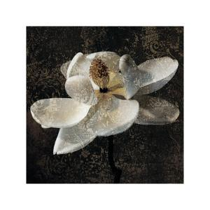 Magnolia II by John Seba