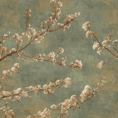 Morning Blossom II