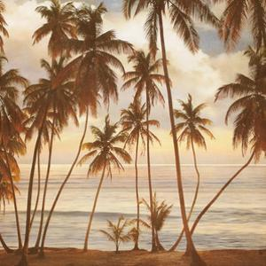 Palms on the Water I by John Seba
