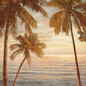 Palms on the Water II by John Seba