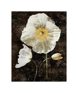 Poppies II by John Seba