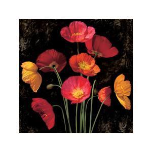 Poppy Bouquet I by John Seba