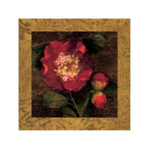 Red Camellias I by John Seba