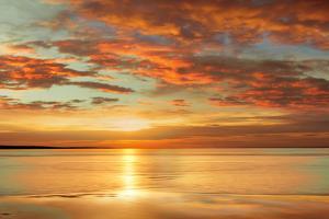 Sunlit by John Seba