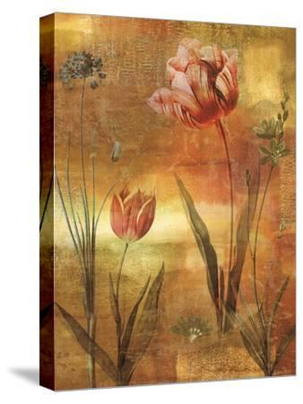 Tulip Garden II