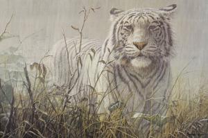 Monsoon- White Tiger (detail) by John Seerey-Lester