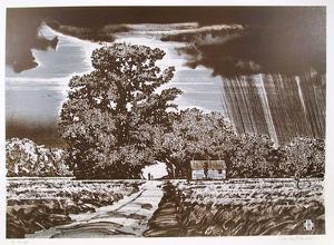 Storm Clouds by John Shemitt Houser