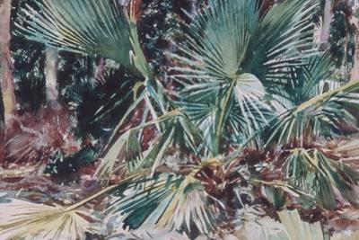 Palmettos, 1917