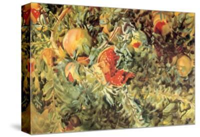 Pomegranates, 1908