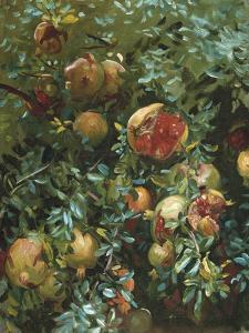 Pomegranates, Majorca by John Singer Sargent