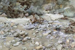River Bed by John Singer Sargent