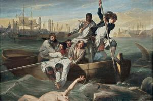 Watson and the Shark by John Singleton Copley