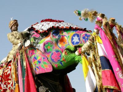 Colourful Elephants at Elephant Festival by John Sones