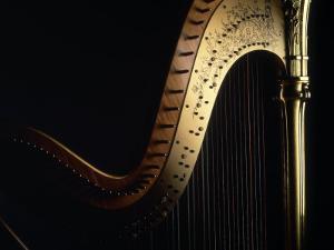 Harp by John T. Wong