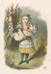 Alice and the Pig Alice Carrying a Baby Pig by John Tenniel