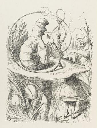 Caterpillar Alice and the Caterpillar