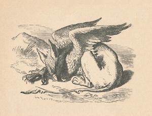 'The Gryphon asleep in the sun', 1889 by John Tenniel