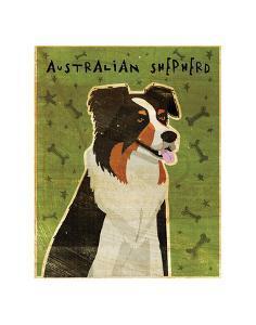 Australian Shepherd by John W^ Golden