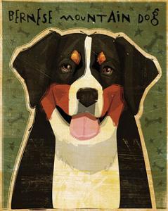 Bernese Mountain Dog by John W^ Golden