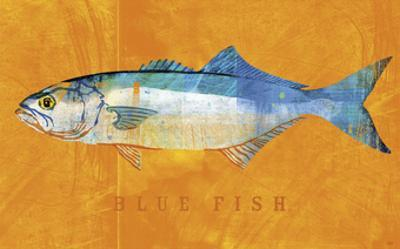 Bluefish by John W^ Golden