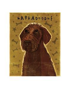 Chocolate Labradoodle by John W^ Golden