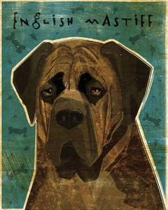English Mastiff (Brindle) by John W^ Golden