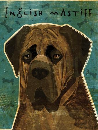 English Mastiff - Brindle