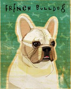 French Bulldog (White) by John W^ Golden