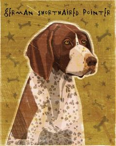 German Shorthaired Pointer by John W^ Golden