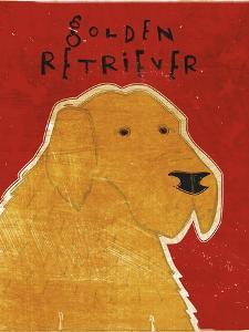 Golden Retriever by John W Golden
