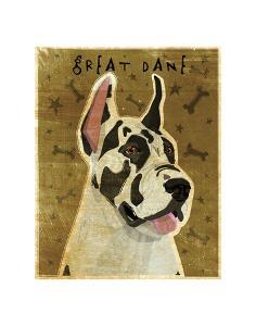 Great Dane (Harlequin) by John W^ Golden