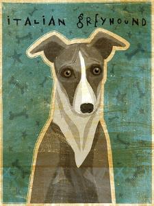 Italian Greyhound - White and Grey by John W Golden