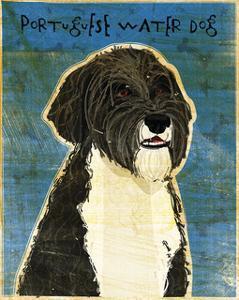 Portuguese Water Dog by John W^ Golden