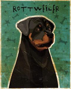 Rottweiler by John W^ Golden
